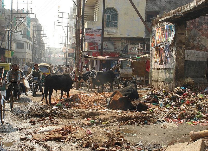 Страховка в Индию